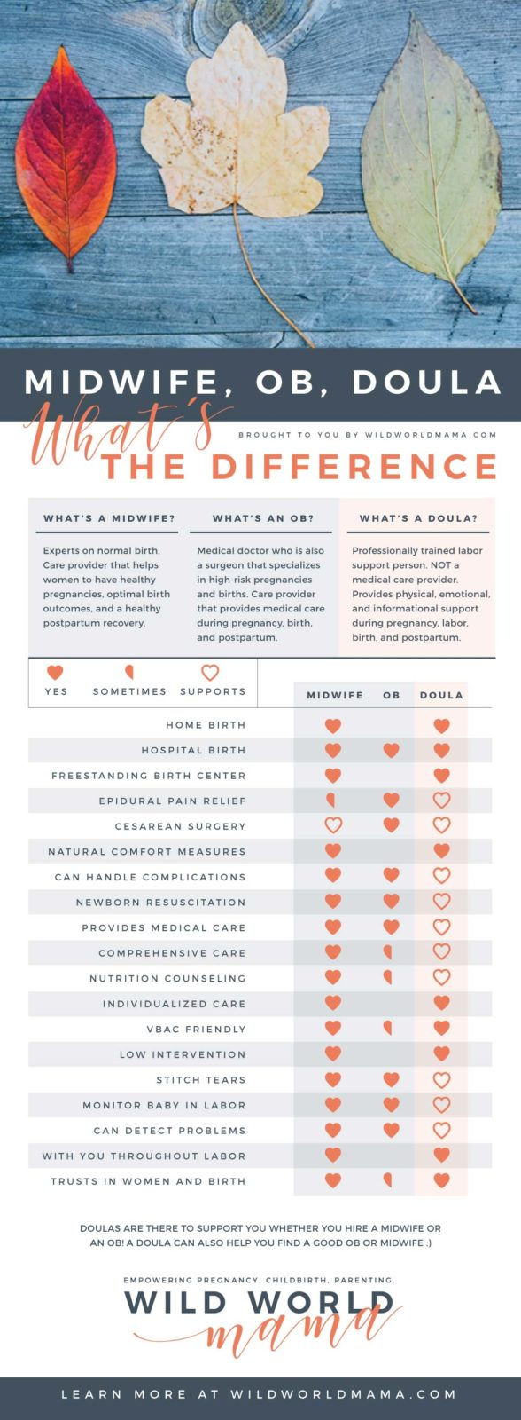 Wild World Mama - Midwife, OB, Doula. What's the Difference Infographic