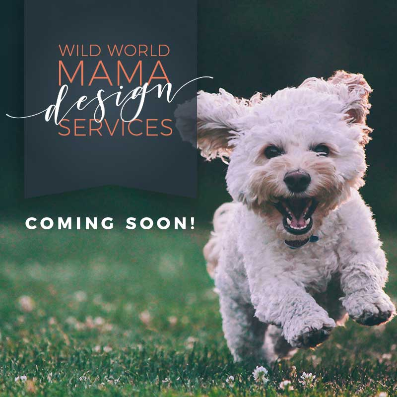 Wild World Mama Design Services Coming Soon!
