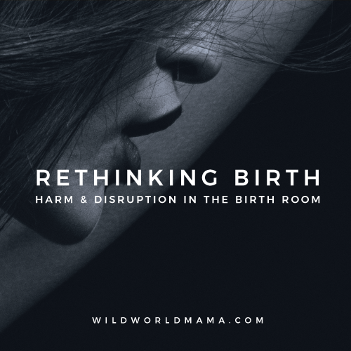 RETHINKING BIRTH HARM & DISRUPTION IN THE BIRTH ROOM