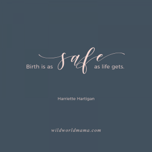 """Birth is as safe as life gets"" - Quote by Harriette Hartigan. Wild World Mama Blog Post"
